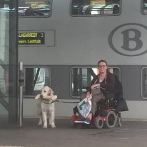 Openbaar Vervoer met een beperking