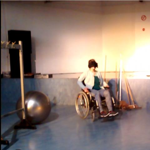 blogger in een rolstoel